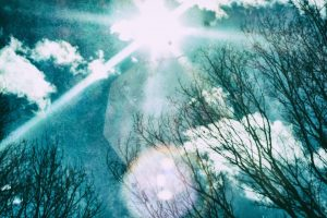 kazukihiroDSCF1580-Edit_TP_V