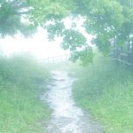 TSU863_kirinosaki_TP_V